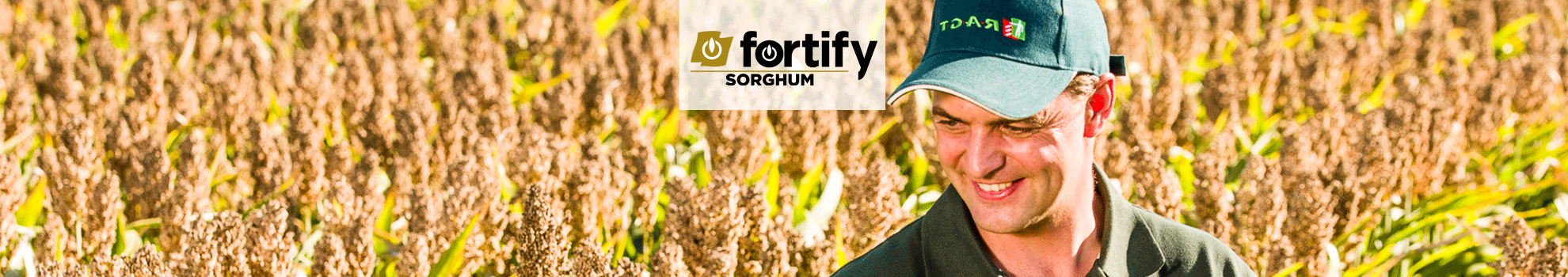 fortify SORGHUM